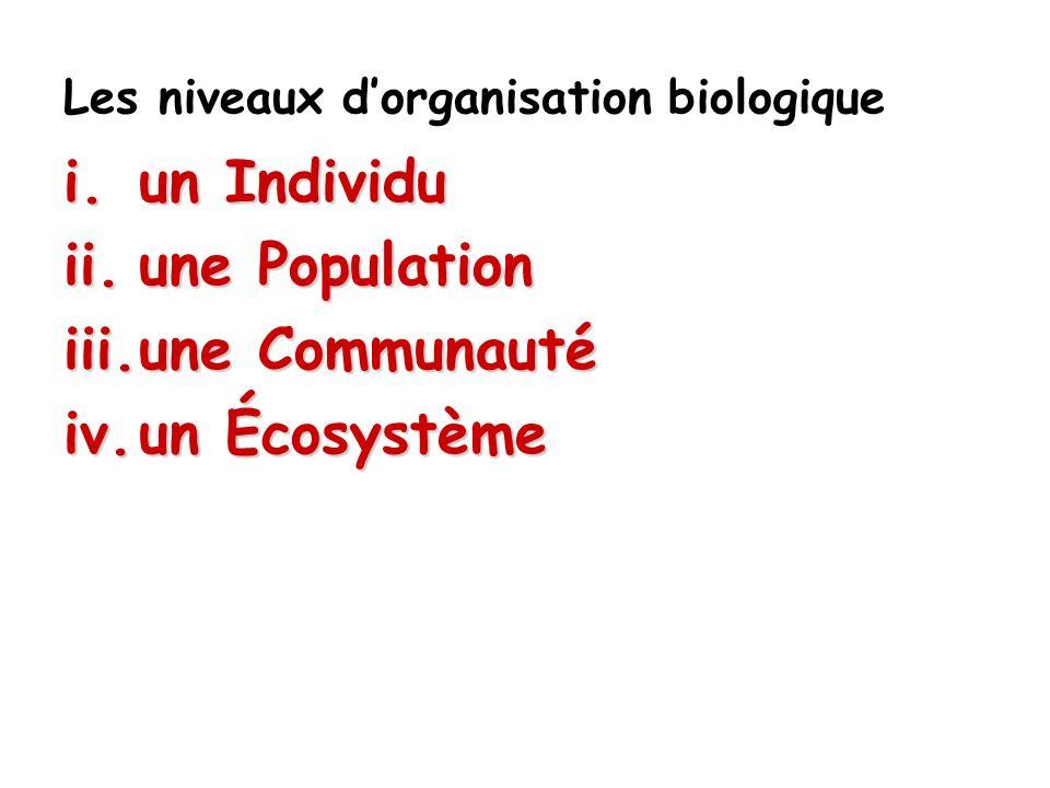 Les écosystèmes Un écosystème se définit comme l es interactions entre les facteurs abiotiques dun endroit donné et la communauté biotique qui lhabite.