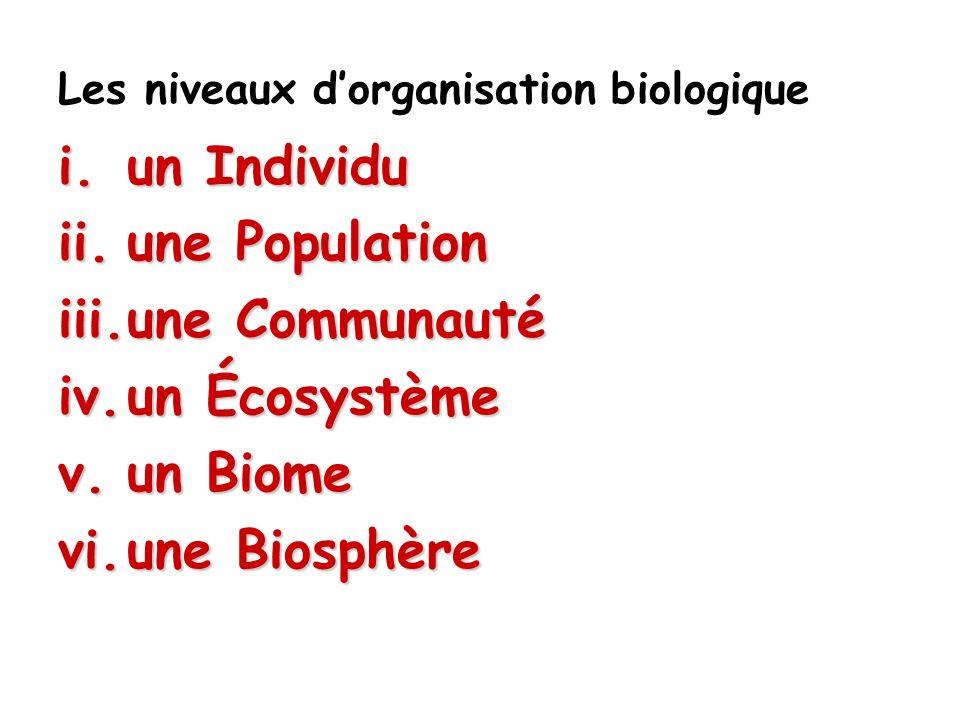 Une b bb biosphère comprend tous les endroits de la planète où les êtres vivants peuvent exister et interagir avec le milieu physique.