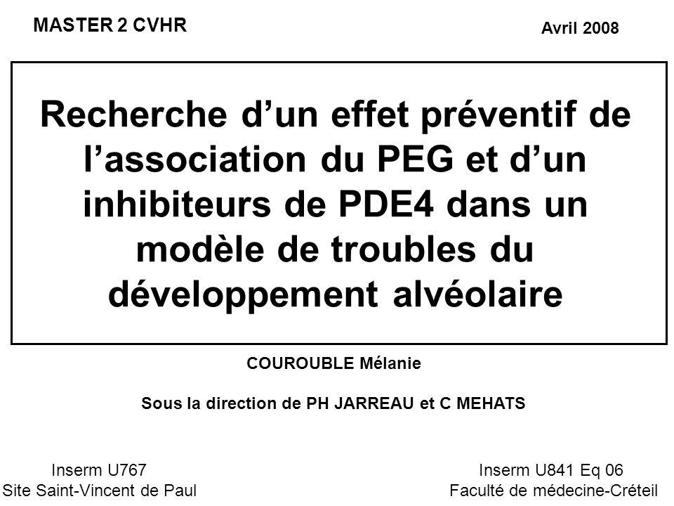 Recherche dun effet préventif de lassociation du PEG et dun inhibiteurs de PDE4 dans un modèle de troubles du développement alvéolaire MASTER 2 CVHR C