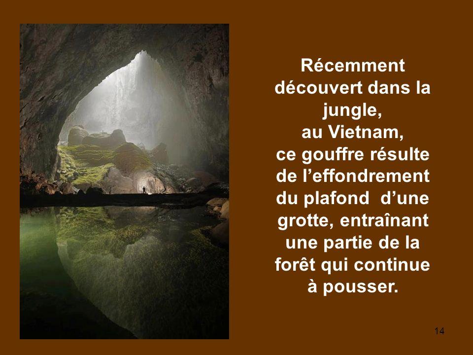 14 Récemment découvert dans la jungle, au Vietnam, ce gouffre résulte de leffondrement du plafond dune grotte, entraînant une partie de la forêt qui continue à pousser.