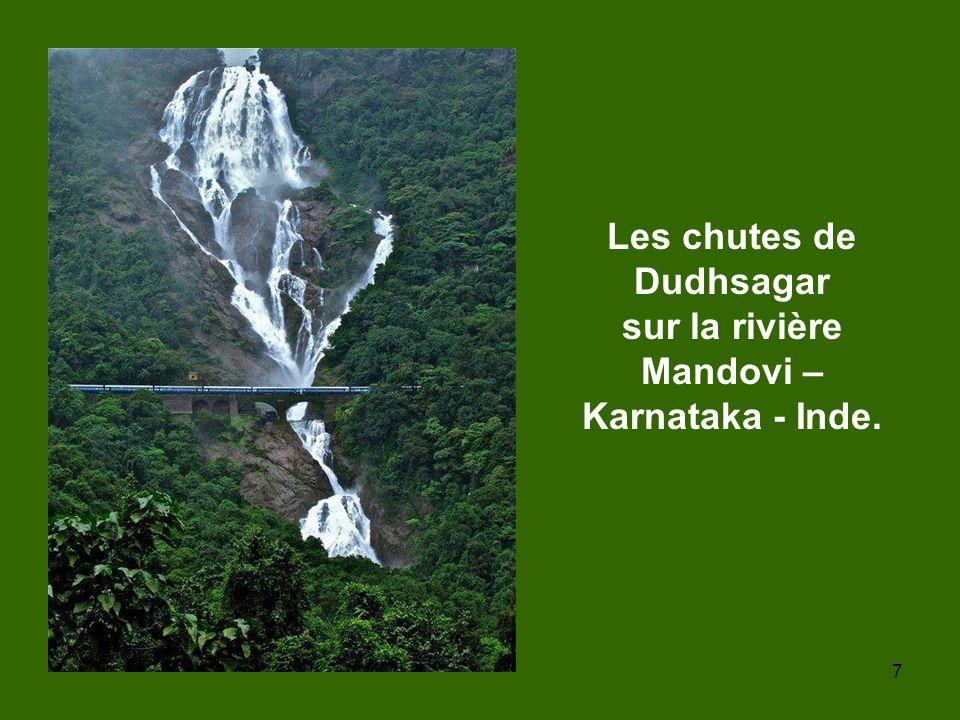 7 Les chutes de Dudhsagar sur la rivière Mandovi – Karnataka - Inde.