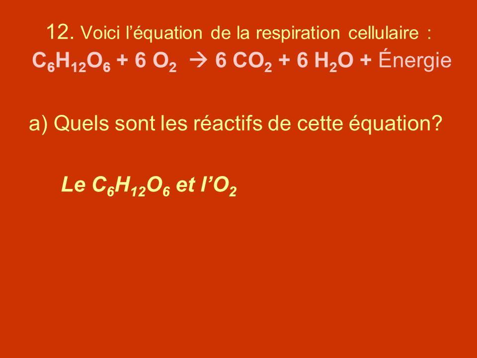 12. Voici léquation de la respiration cellulaire : C 6 H 12 O 6 + 6 O 2 6 CO 2 + 6 H 2 O + Énergie a) Quels sont les réactifs de cette équation? Le C