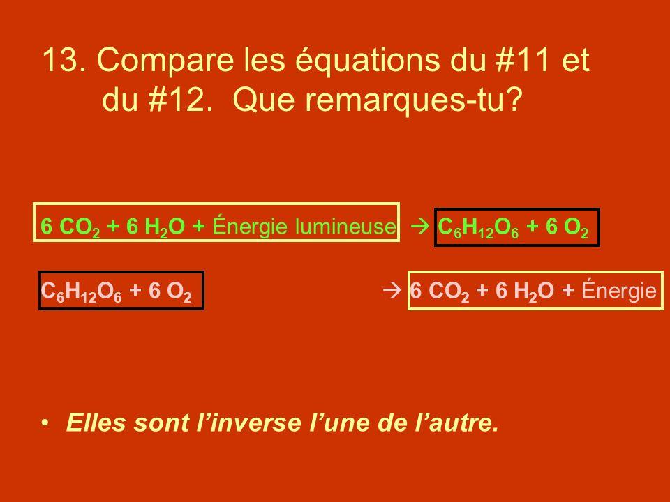 13. Compare les équations du #11 et du #12. Que remarques-tu? 6 CO 2 + 6 H 2 O + Énergie lumineuse C 6 H 12 O 6 + 6 O 2 C 6 H 12 O 6 + 6 O 2 6 CO 2 +