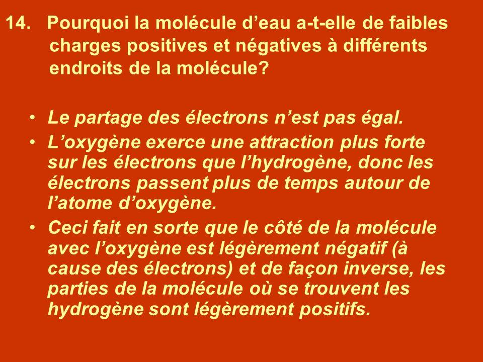 14. Pourquoi la molécule deau a-t-elle de faibles charges positives et négatives à différents endroits de la molécule? Le partage des électrons nest p