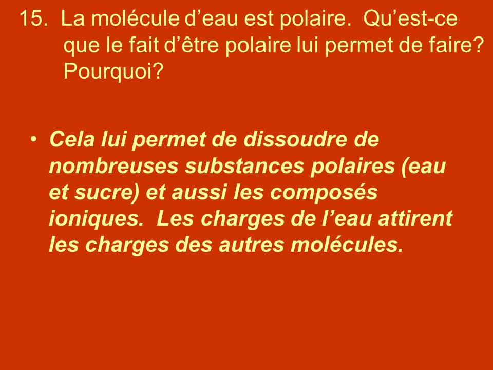 15. La molécule deau est polaire. Quest-ce que le fait dêtre polaire lui permet de faire? Pourquoi? Cela lui permet de dissoudre de nombreuses substan