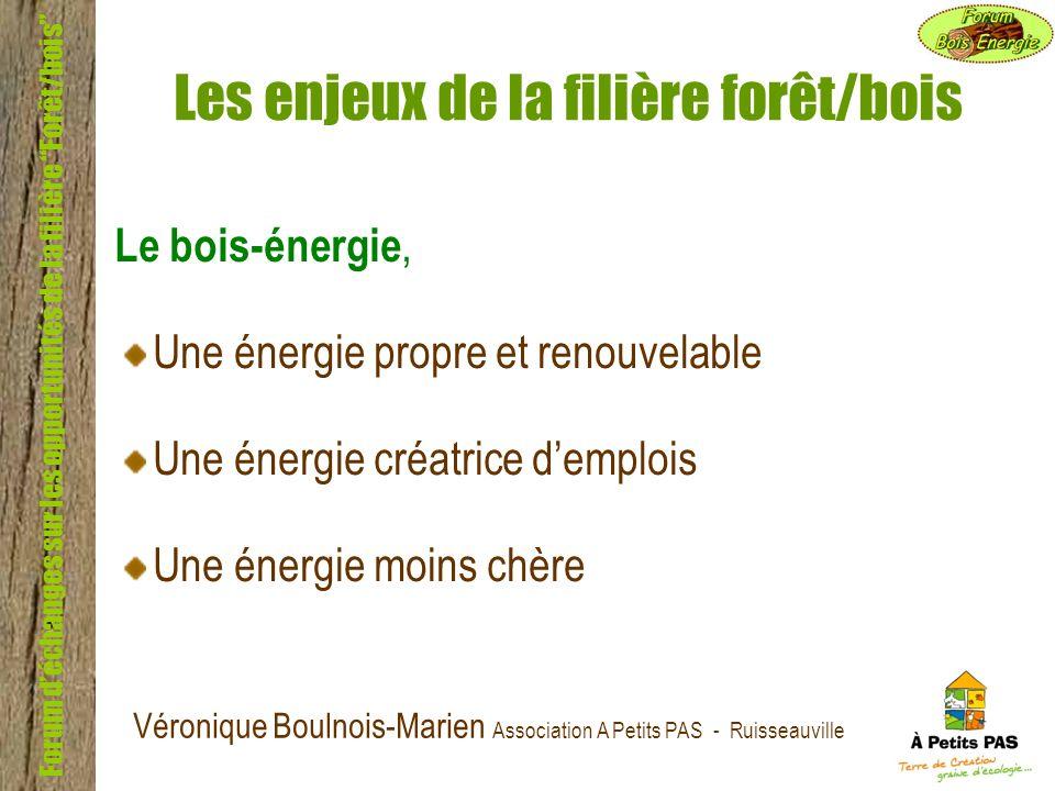 Forum déchanges sur les opportunités de la filière Forêt/bois Les enjeux de la filière forêt/bois Le bois-énergie, Une énergie propre et renouvelable