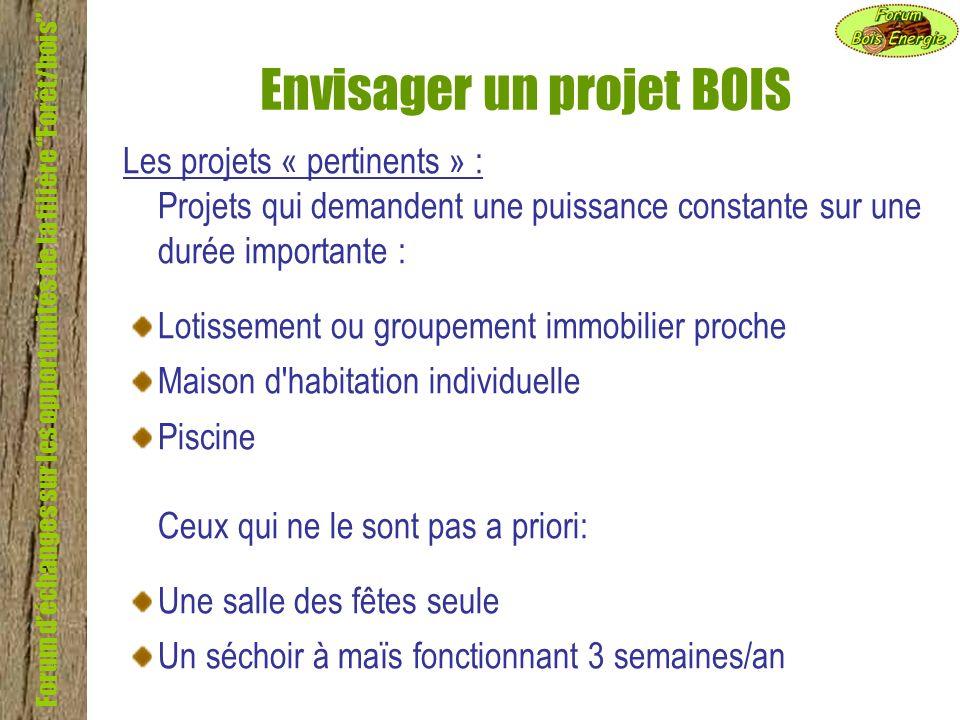 Forum déchanges sur les opportunités de la filière Forêt/bois Envisager un projet BOIS Les projets « pertinents » : Projets qui demandent une puissanc