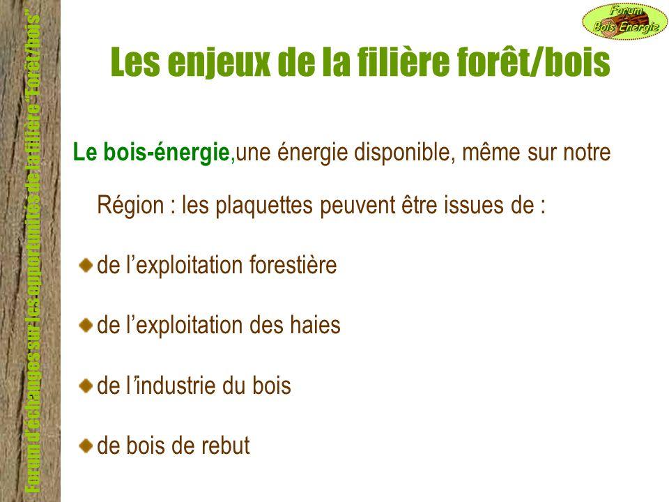 Forum déchanges sur les opportunités de la filière Forêt/bois Les enjeux de la filière forêt/bois Le bois-énergie,une énergie disponible, même sur not
