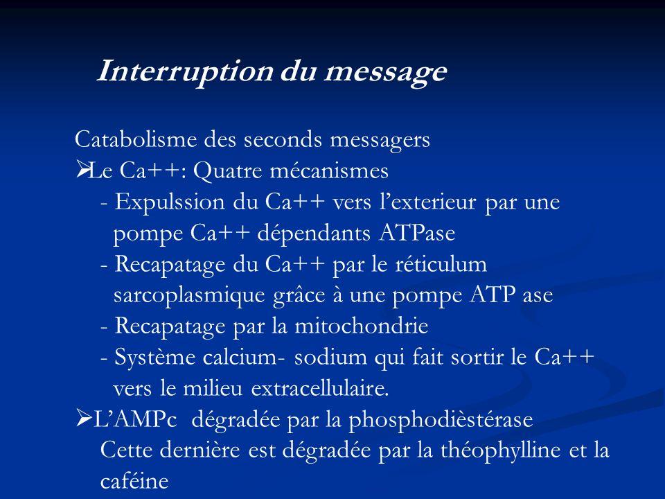 Interruption du message Catabolisme des seconds messagers Le Ca++: Quatre mécanismes - Expulssion du Ca++ vers lexterieur par une pompe Ca++ dépendant