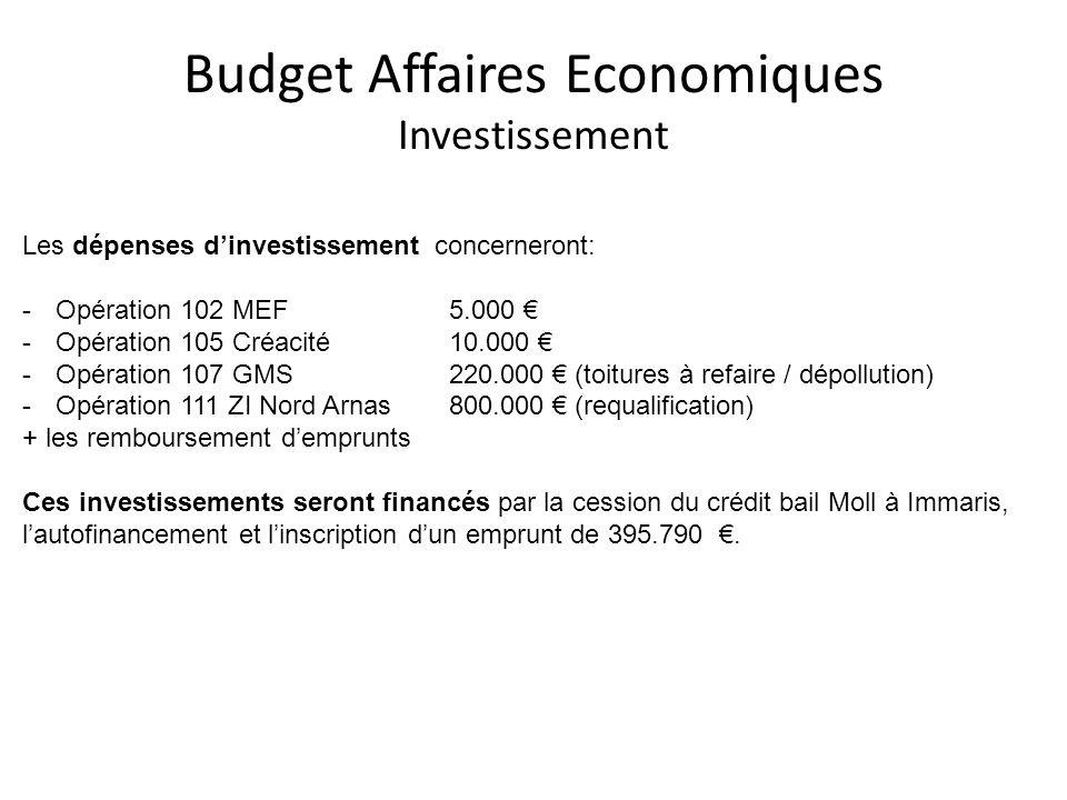 Budget Affaires Economiques Investissement Les dépenses dinvestissement concerneront: -Opération 102 MEF5.000 -Opération 105 Créacité10.000 -Opération