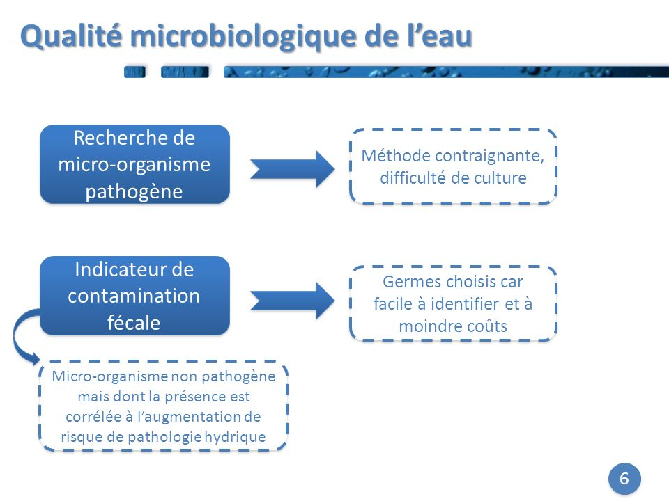 6 Recherche de micro-organisme pathogène Indicateur de contamination fécale Méthode contraignante, difficulté de culture Micro-organisme non pathogène mais dont la présence est corrélée à laugmentation de risque de pathologie hydrique Germes choisis car facile à identifier et à moindre coûts