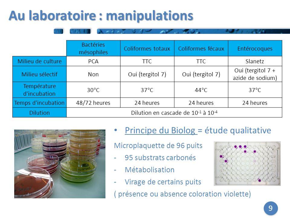9 Bactéries mésophiles Coliformes totauxColiformes fécauxEntérocoques Milieu de culturePCATTC Slanetz Milieu sélectifNonOui (tergitol 7) Oui (tergitol 7 + azide de sodium) Température d incubation 30°C37°C44°C37°C Temps d incubation48/72 heures24 heures DilutionDilution en cascade de 10 -1 à 10 -4 Principe du Biolog = étude qualitative Microplaquette de 96 puits -95 substrats carbonés -Métabolisation -Virage de certains puits ( présence ou absence coloration violette)