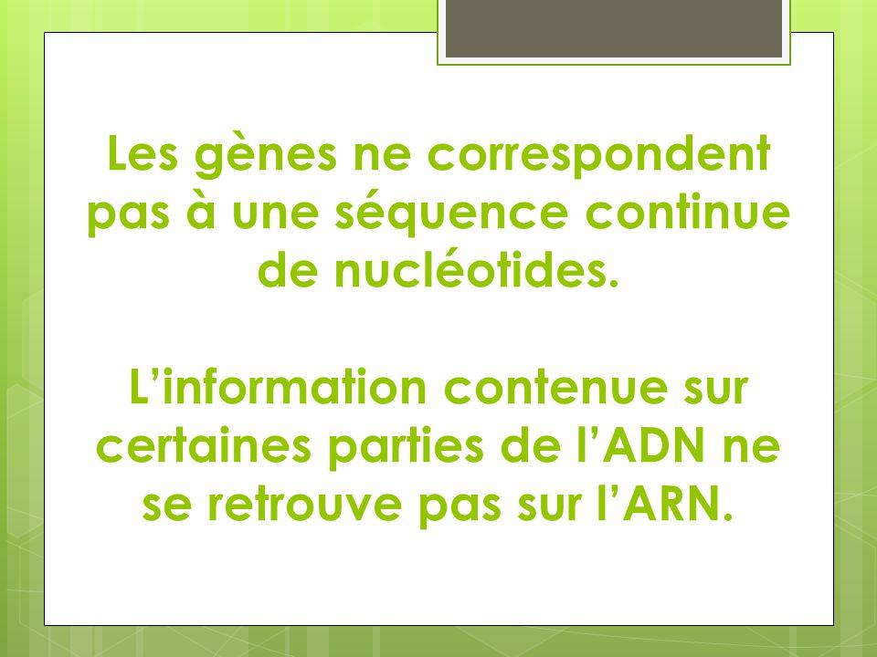 Les gènes ne correspondent pas à une séquence continue de nucléotides. Linformation contenue sur certaines parties de lADN ne se retrouve pas sur lARN