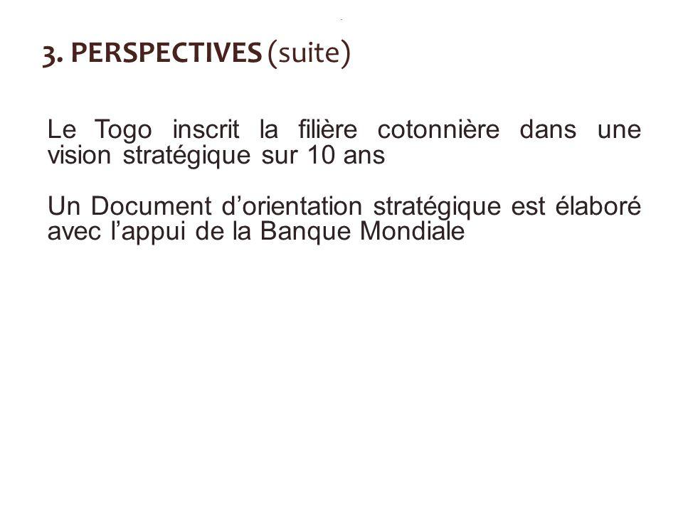 3. PERSPECTIVES (suite) Le Togo inscrit la filière cotonnière dans une vision stratégique sur 10 ans Un Document dorientation stratégique est élaboré