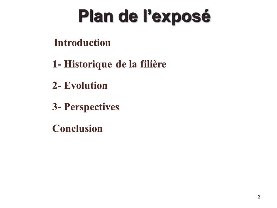 Introduction 1- Historique de la filière 2- Evolution 3- Perspectives Conclusion 2 Plan de lexposé