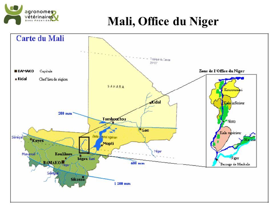 Mali, Office du Niger