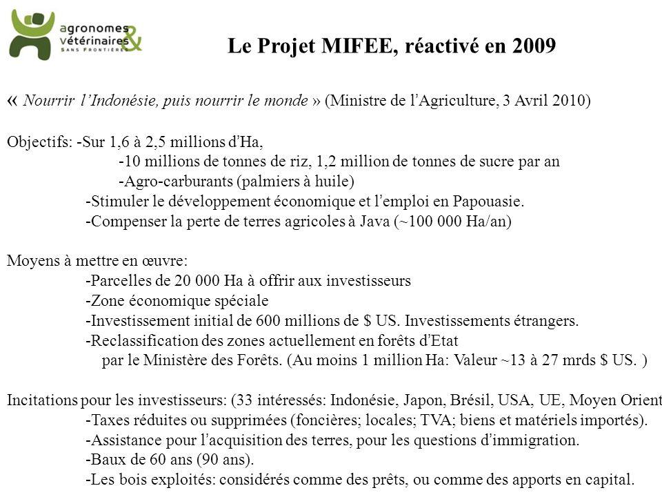 Le Projet MIFEE, réactivé en 2009 « Nourrir lIndonésie, puis nourrir le monde » (Ministre de lAgriculture, 3 Avril 2010) Objectifs: -Sur 1,6 à 2,5 mil