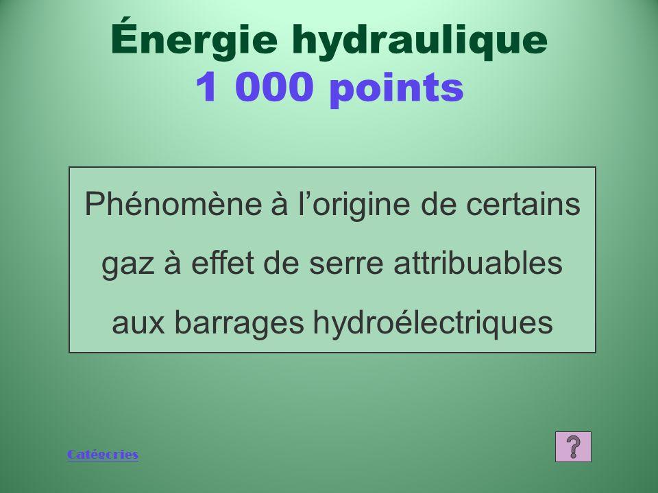 Catégories Quest-ce que 60 % Énergie hydraulique 800 points