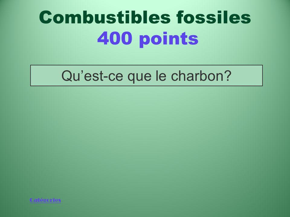 Catégories Combustible fossile qui a alimenté la révolution industrielle Combustibles fossiles 400 points