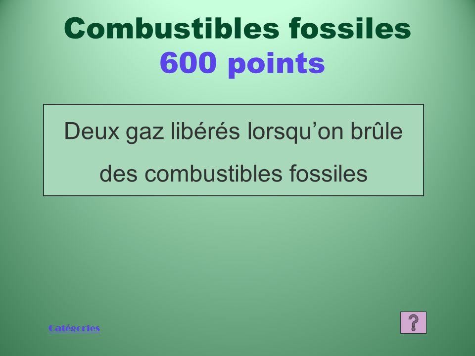 Catégories Quest-ce que le charbon? Combustibles fossiles 400 points