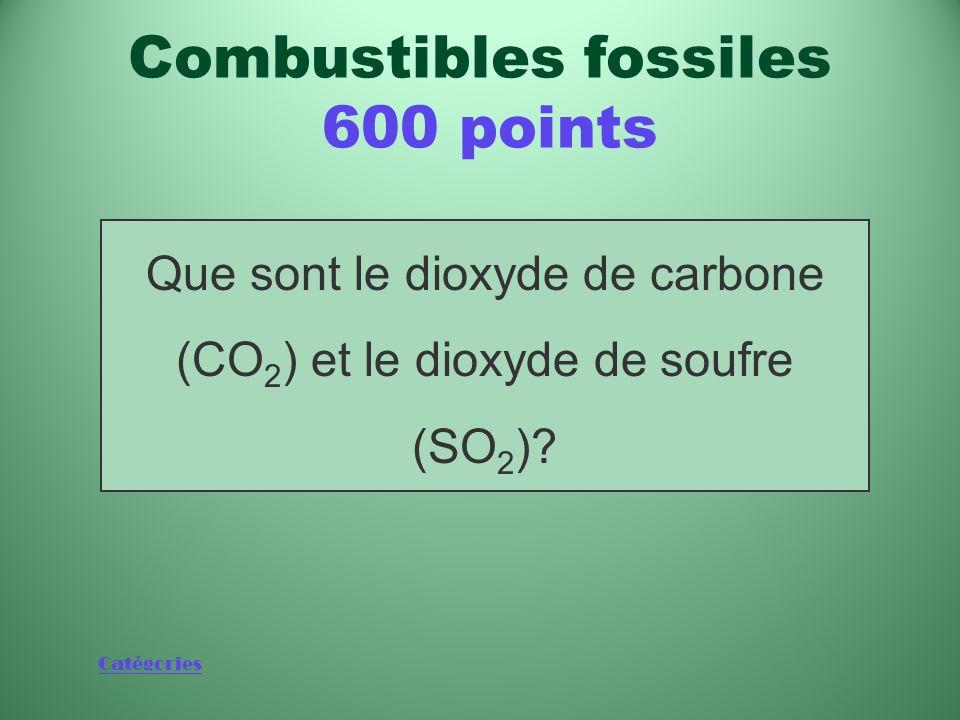 Catégories Deux gaz libérés lorsquon brûle des combustibles fossiles Combustibles fossiles 600 points