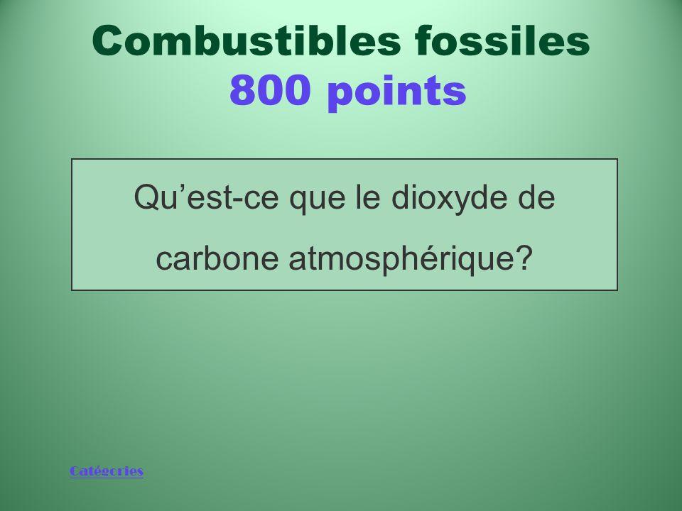 Catégories Substance qui augmente au rythme de 3,2 milliards de tonnes par an selon les estimations Combustibles fossiles 800 points
