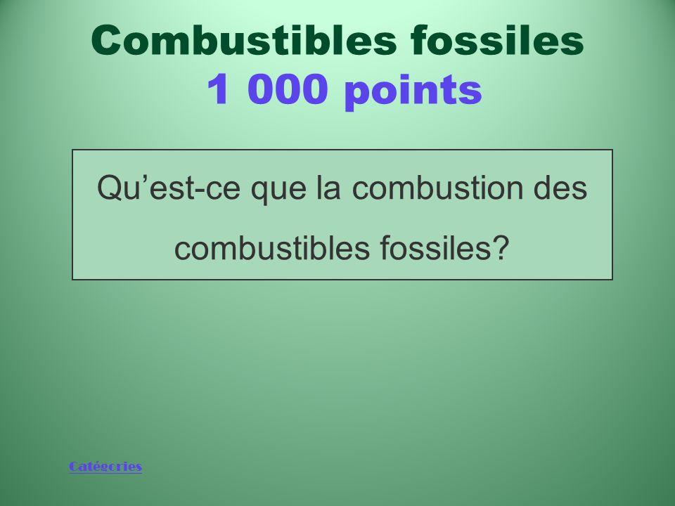 Catégories Source de 86 % de lénergie produite par lhomme en 2004 selon les estimations Combustibles fossiles 1 000 points