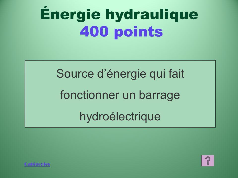 Catégories Source dénergie qui fait fonctionner un barrage hydroélectrique Énergie hydraulique 400 points