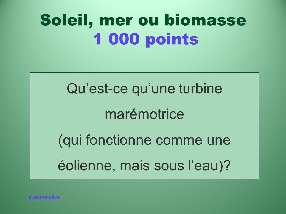 Catégories Nouvelle technologie prometteuse dans le domaine de lénergie marémotrice Soleil, mer ou biomasse 1 000 points