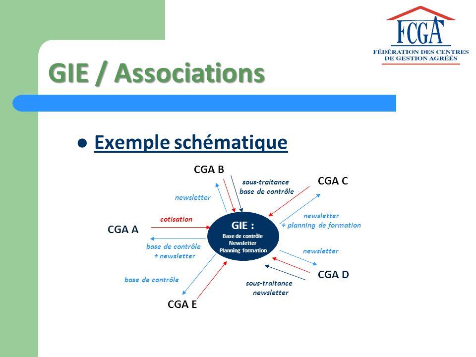 GIE / Associations Exemple schématique CGA A CGA B CGA C CGA E CGA D GIE : Base de contrôle Newsletter Planning formation cotisation base de contrôle