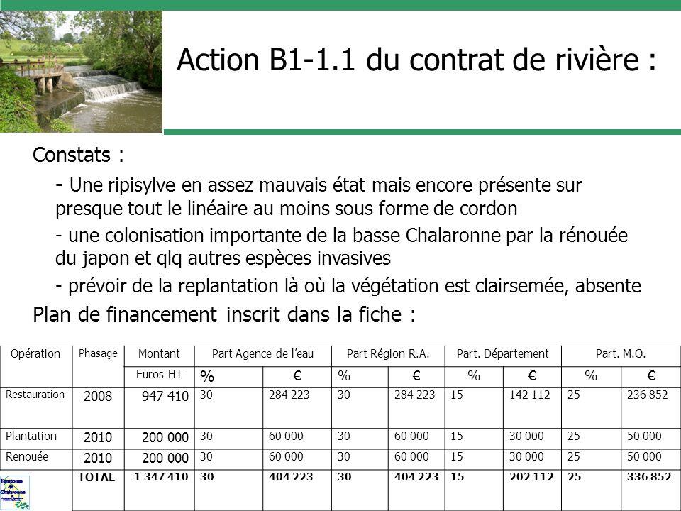 Action B1-1.1 du contrat de rivière : Constats : - Une ripisylve en assez mauvais état mais encore présente sur presque tout le linéaire au moins sous