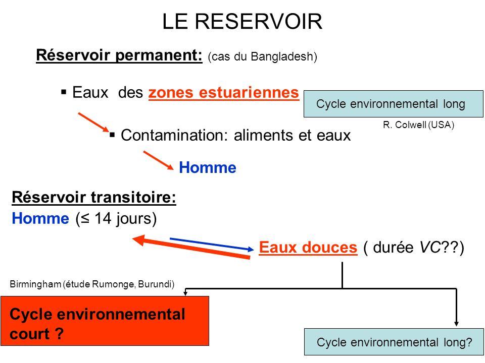 Réservoir permanent: (cas du Bangladesh) Eaux des zones estuariennes Contamination: aliments et eaux Réservoir transitoire: Homme ( 14 jours) Cycle en