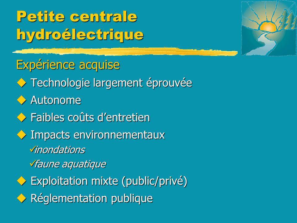 Petite centrale hydroélectrique Expérience acquise u Technologie largement éprouvée u Autonome u Faibles coûts dentretien u Impacts environnementaux i