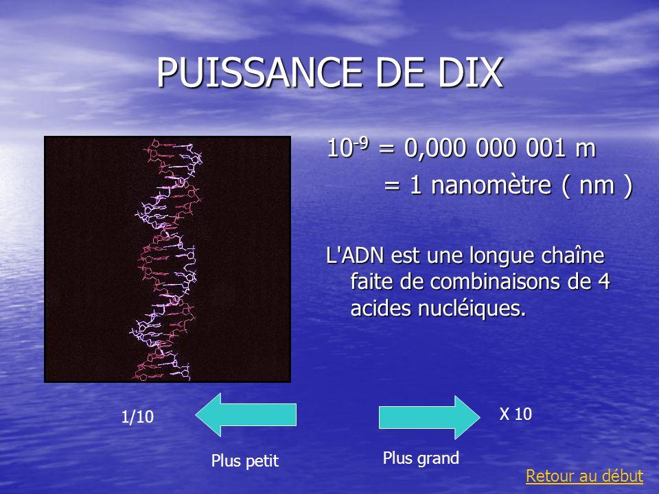 PUISSANCE DE DIX 10 -9 = 0,000 000 001 m = 1 nanomètre ( nm ) = 1 nanomètre ( nm ) L'ADN est une longue chaîne faite de combinaisons de 4 acides nuclé