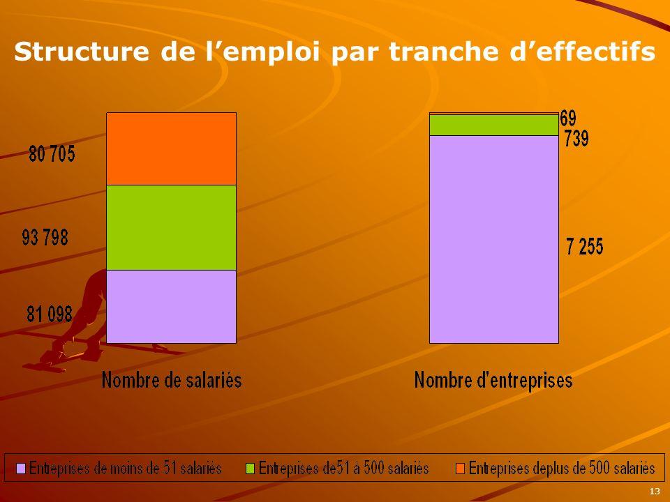 Structure de lemploi par tranche deffectifs 13