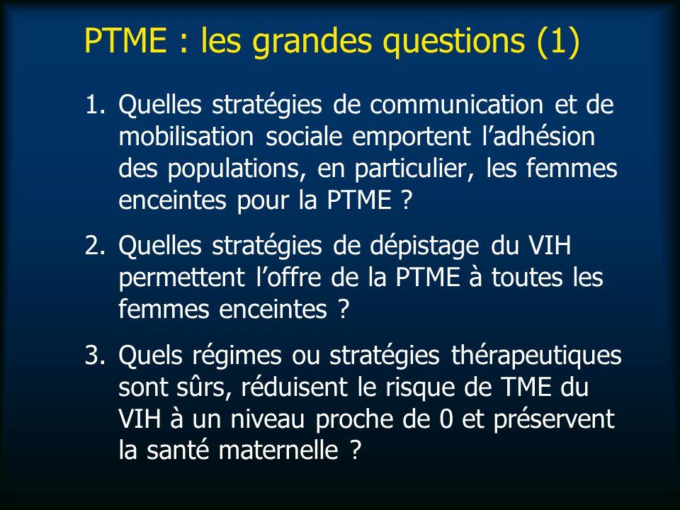PTME : les grandes questions (1) 1.Quelles stratégies de communication et de mobilisation sociale emportent ladhésion des populations, en particulier, les femmes enceintes pour la PTME .