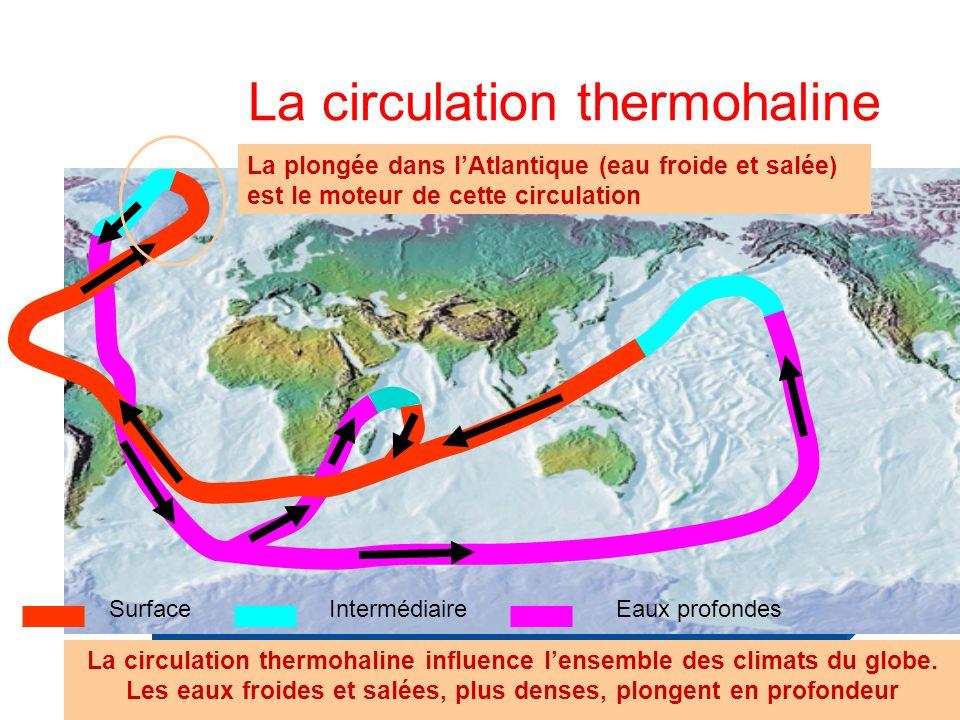 La circulation thermohaline SurfaceIntermédiaireEaux profondes La circulation thermohaline influence lensemble des climats du globe.