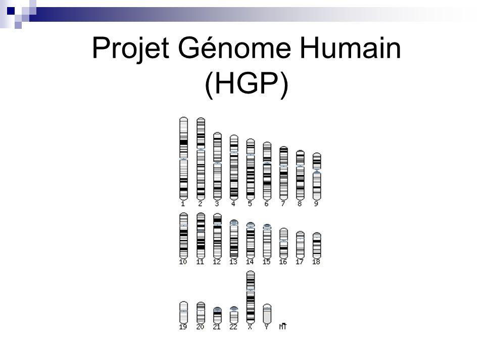 Plan 1 ère heure Génome Tailles des génomes Projet « Génome Humain » Technique Séquençage 2 ème heure Enjeux (discussion)