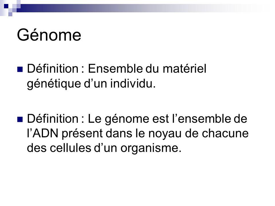 Séquençage selon Sanger Réaction de séquençage (ddGTP) 5ATGGCTATGCCGAG 3TACCGATACGGCTCTGGTATAATGCTGGTC 5 Matrice A G T C G C A C G Polymérase Amorce dNTP + ddGTP