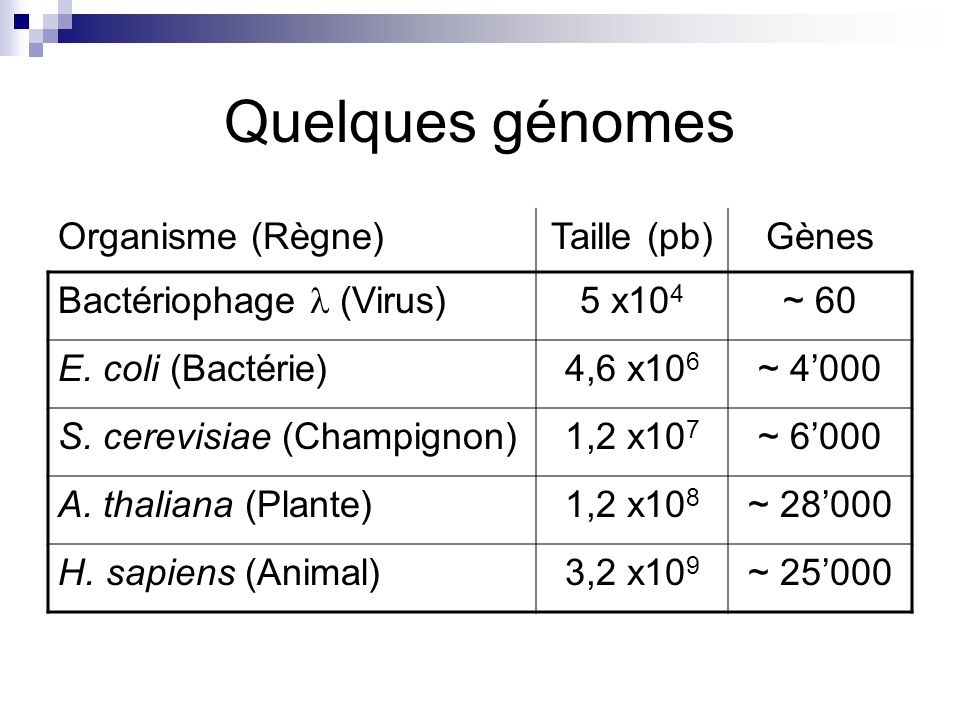 Projet « Génome Humain » But : Séquencer et annoter le génome humain.