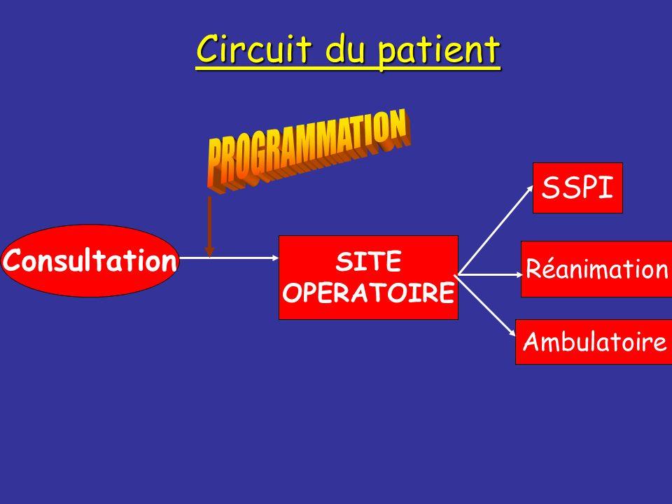 Circuit du patient Consultation SITE OPERATOIRE SSPI Réanimation Ambulatoire