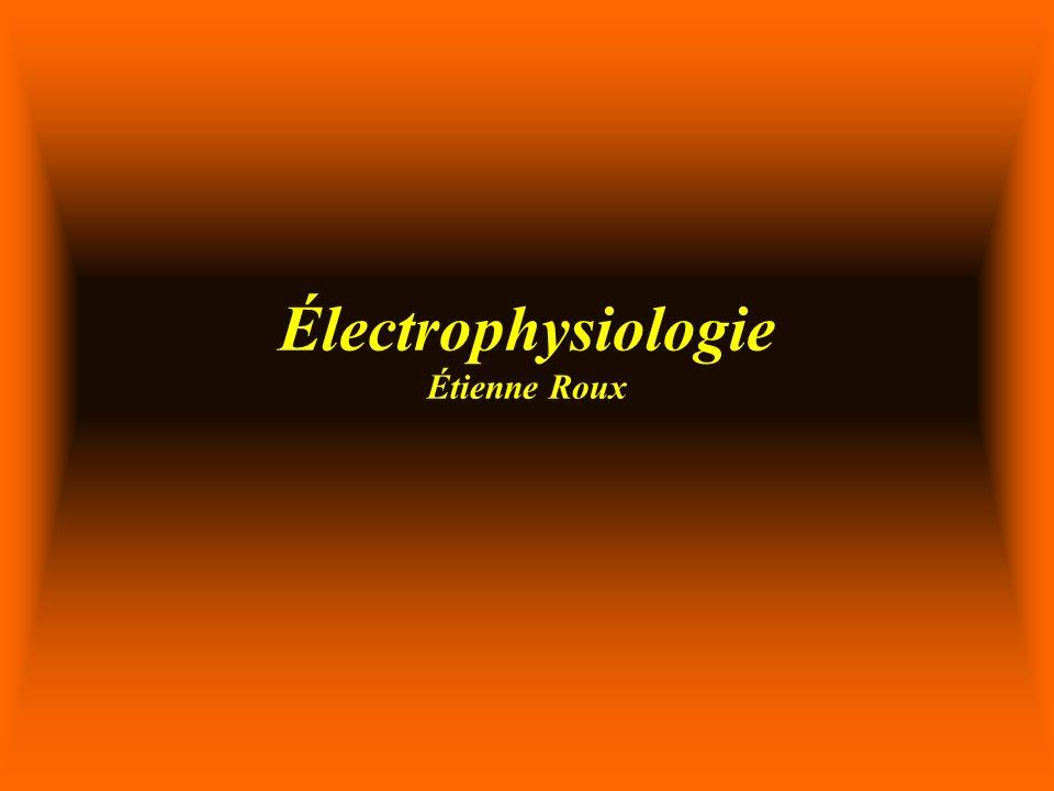 Électrophysiologie Étienne Roux
