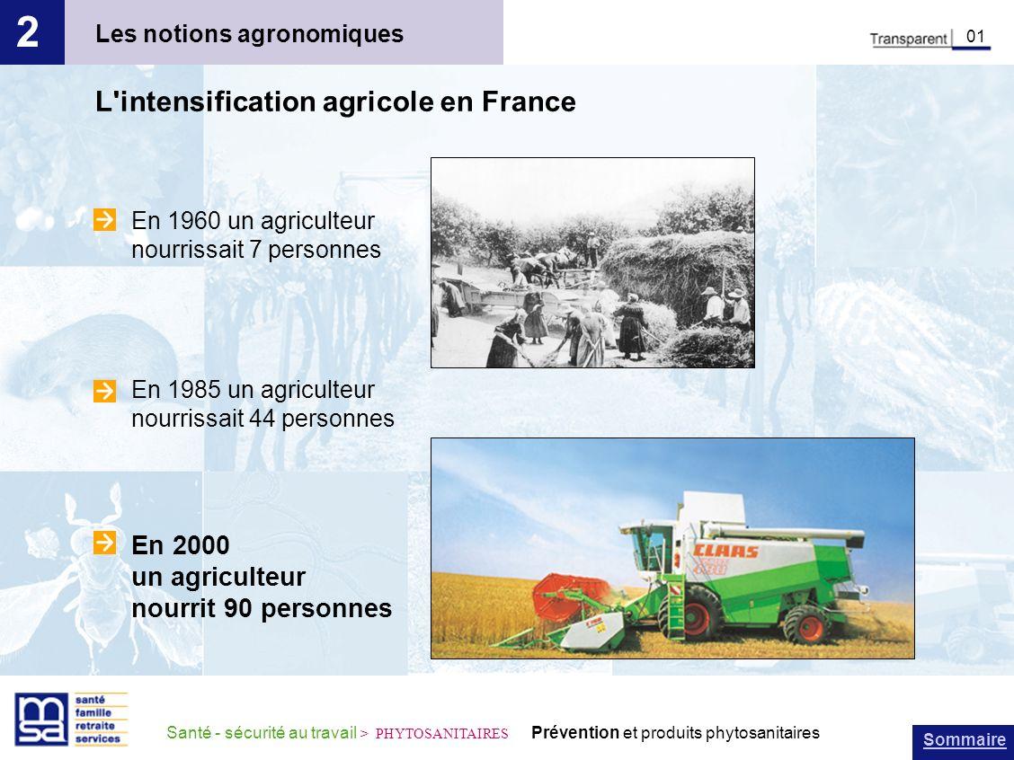 Sommaire Santé - sécurité au travail > PHYTOSANITAIRES Prévention et produits phytosanitaires Les notions agronomiques 2 01 L'intensification agricole