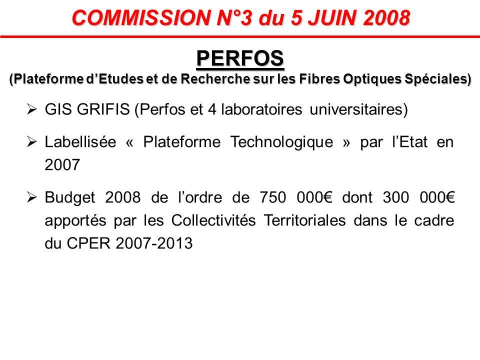COMMISSION N°3 du 5 JUIN 2008 GIS GRIFIS (Perfos et 4 laboratoires universitaires) Labellisée « Plateforme Technologique » par lEtat en 2007 Budget 20