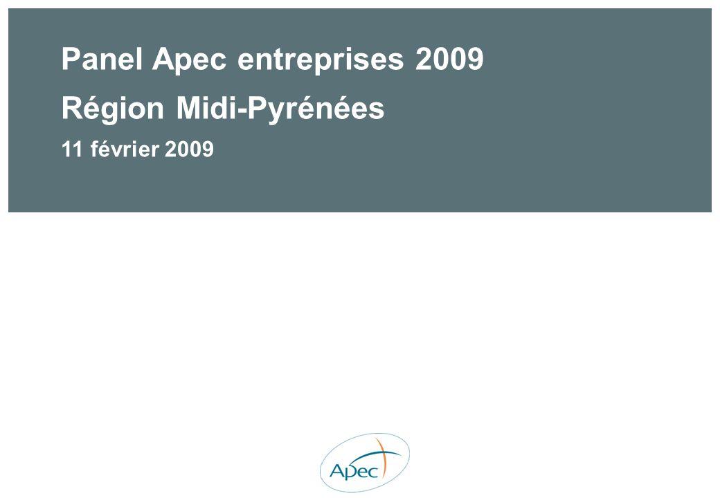 Panel Apec entreprises 2009 Région Midi-Pyrénées 11 février 2009