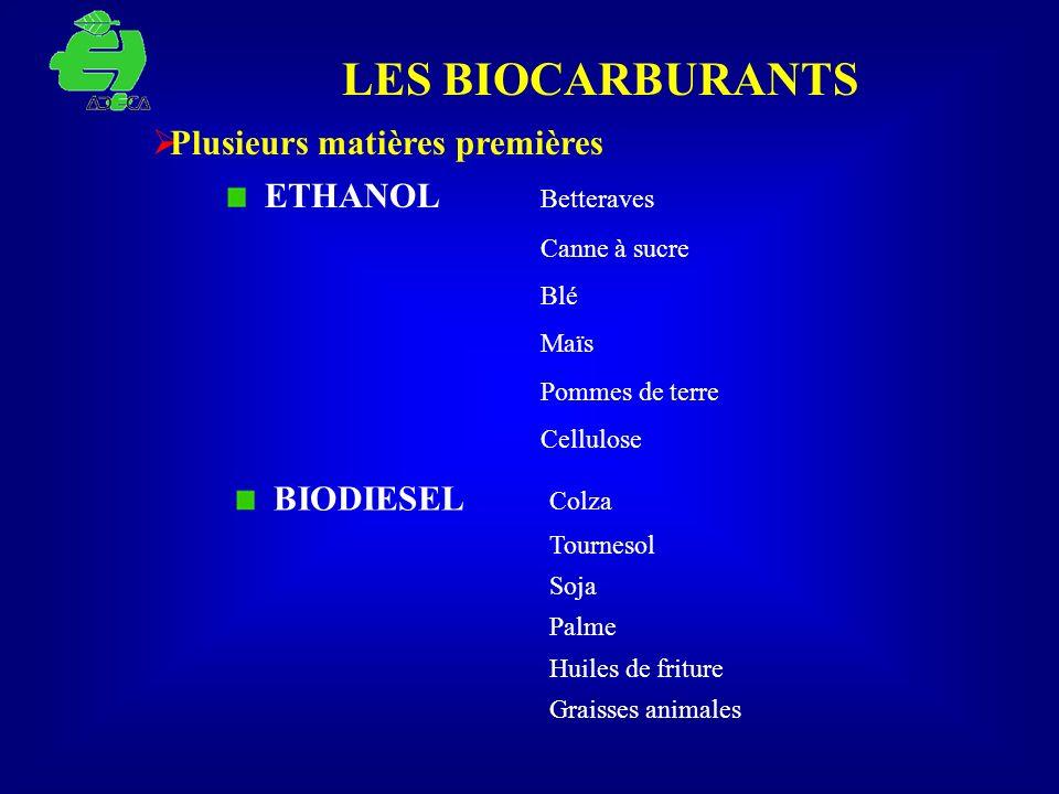 LES BIOCARBURANTS Plusieurs matières premières ETHANOL Betteraves Canne à sucre Blé Maïs Pommes de terre Cellulose BIODIESEL Colza Tournesol Soja Palm