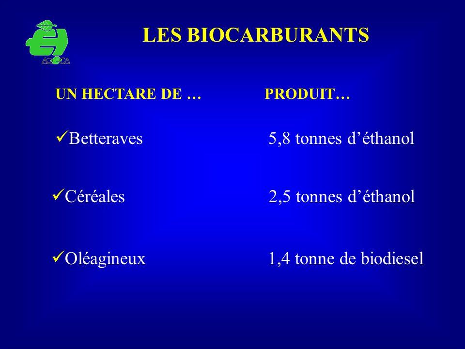 LES BIOCARBURANTS Oléagineux 1,4 tonne de biodiesel UN HECTARE DE … PRODUIT… Betteraves 5,8 tonnes déthanol Céréales 2,5 tonnes déthanol