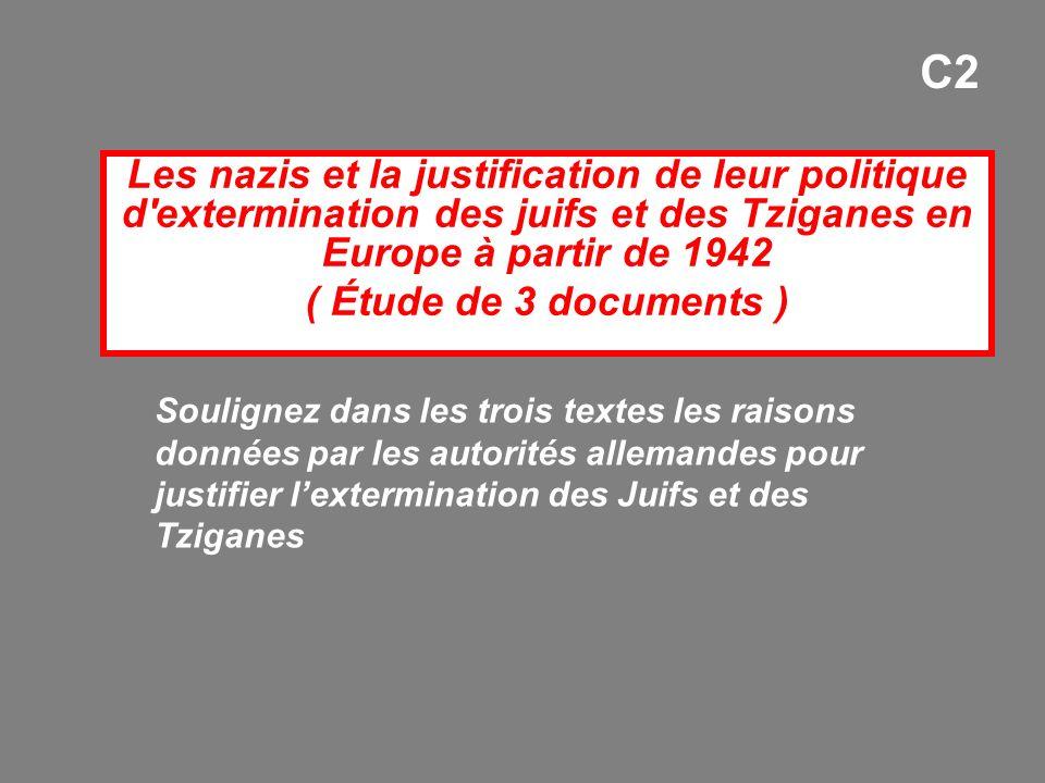 Les nazis et la justification de leur politique d'extermination des juifs et des Tziganes en Europe à partir de 1942 ( Étude de 3 documents ) C2 Souli
