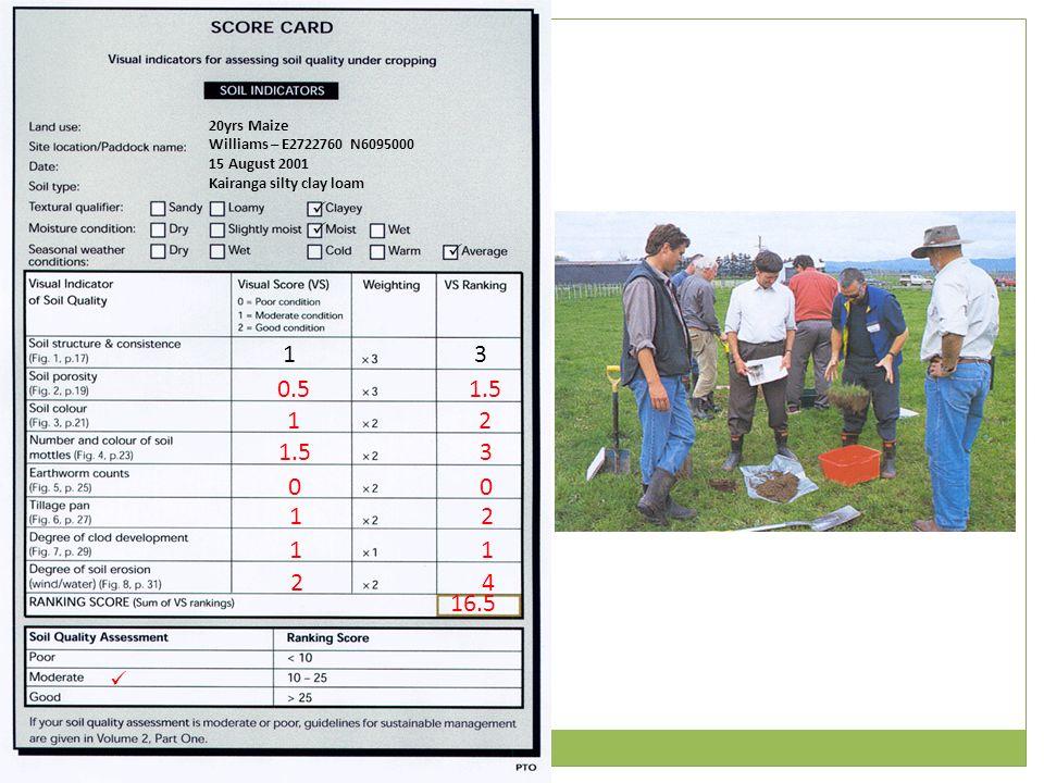 13 20yrs Maize Williams – E2722760 N6095000 15 August 2001 Kairanga silty clay loam 0.51.5 12 3 00 12 11 24 16.5