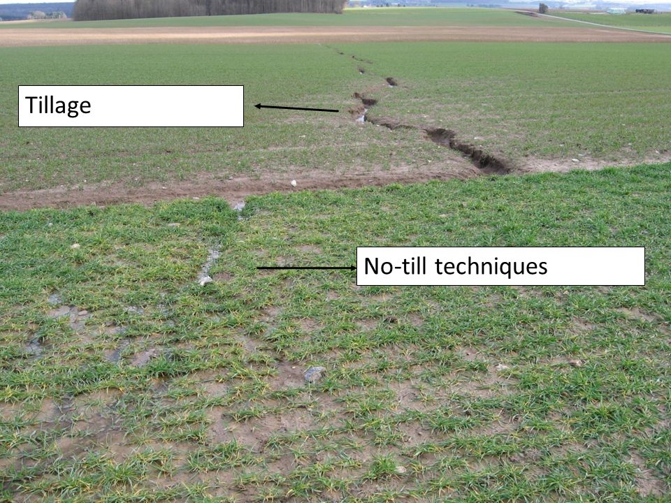 Greenotec ASBL18 No-till techniques Tillage Terwagne VI, 31/03/2008 (© Greenotec ASBL)